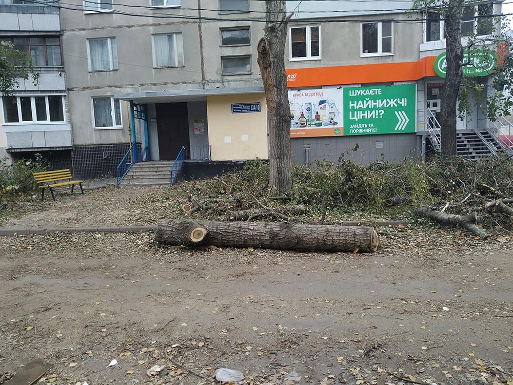 Обрезка деревьев без разрешительных документов